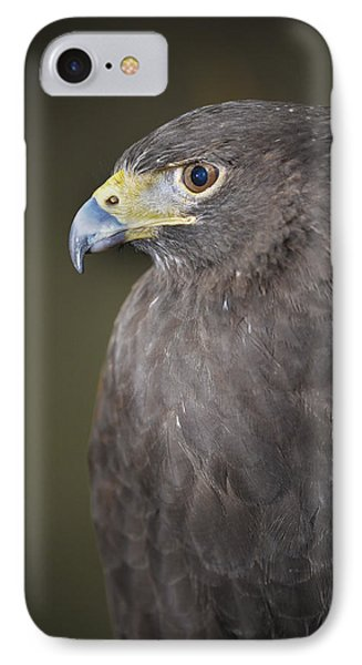 IPhone Case featuring the photograph Harris Hawk by Tyson and Kathy Smith