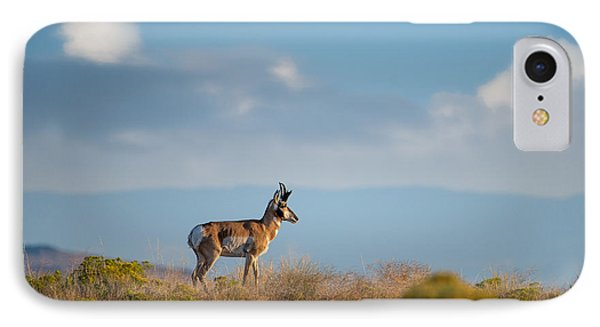 Hart Mountain Antelope IPhone Case by Leland D Howard