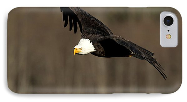 Having A Look-see IPhone Case