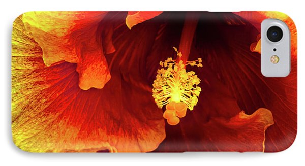 Hawaii Dreamin IPhone Case