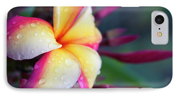 IPhone Case featuring the photograph Hawaii Plumeria Flower Jewels by Sharon Mau