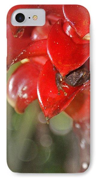 Hawaiian Frog Phone Case by Heather Coen