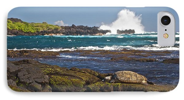 Hawaiian Green Sea Turtle  Phone Case by James Walsh