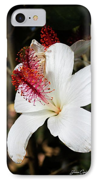 IPhone Case featuring the photograph Hawaiian Hibiscus  by Joann Copeland-Paul