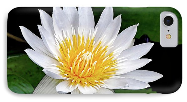 Hawaiian White Water Lily Phone Case by Sue Melvin
