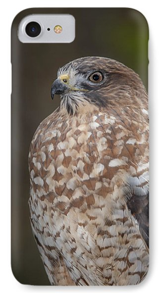 IPhone Case featuring the photograph Hawk by Tyson and Kathy Smith