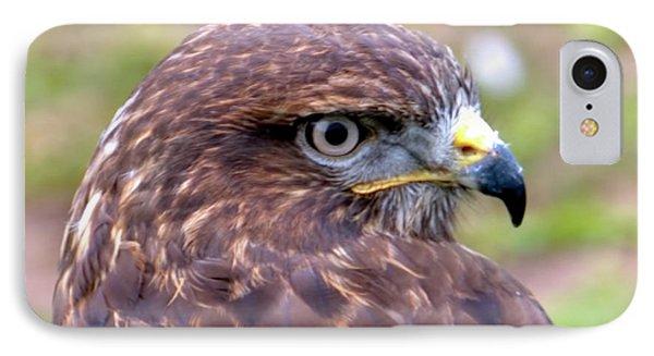 Hawks Eye View IPhone Case