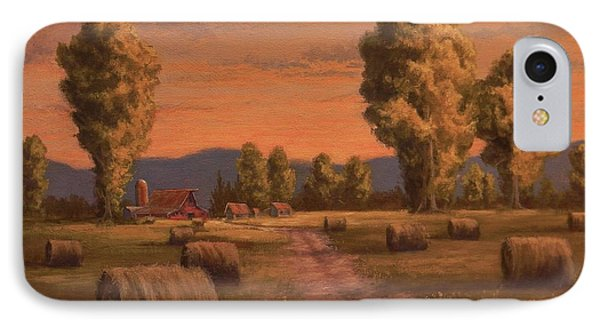 Hay Bales IPhone Case by Paul K Hill