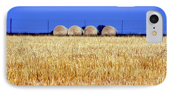 Hay Hay IPhone Case by Debi Demetrion