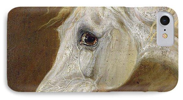 Head Of A Grey Arabian Horse  Phone Case by Martin Theodore Ward