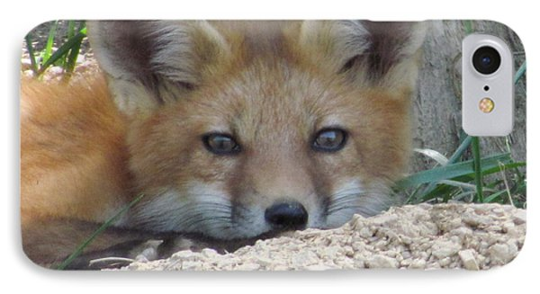 IPhone Case featuring the photograph Head Shot Of Fox Upclose by Laurinda Bowling
