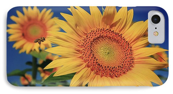 IPhone Case featuring the photograph Heading For Gold by Chris Berry
