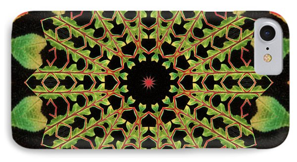 IPhone Case featuring the photograph Healing Mandala 13 by Bell And Todd
