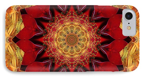 IPhone Case featuring the photograph Healing Mandala 28 by Bell And Todd