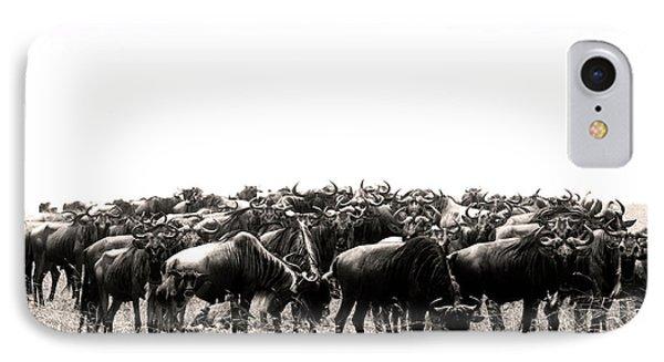 Herd Of Wildebeestes IPhone Case