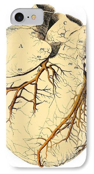 Heart Anatomy, 18th Century Phone Case by