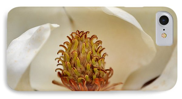 IPhone Case featuring the photograph Heart Of Magnolia by Larry Bishop