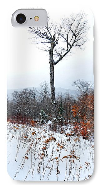 Heart Tree Winter  IPhone Case by Catherine Reusch Daley