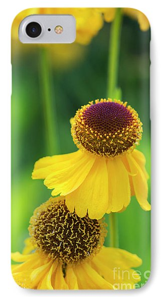 Helenium Riverton Beauty Flowers IPhone Case by Tim Gainey