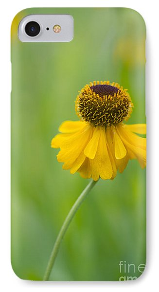 Helenium The Bishop IPhone Case by Tim Gainey