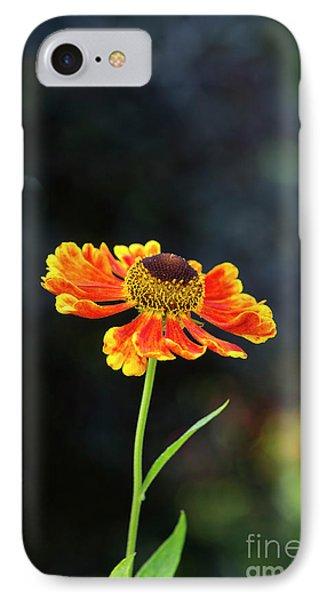 Helenium Waltraut IPhone Case by Tim Gainey