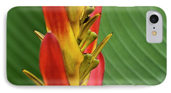 Heliconia Phone Case by Heiko Koehrer-Wagner
