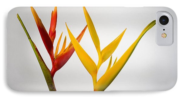 Heliconia Phone Case by Tomas del Amo - Printscapes