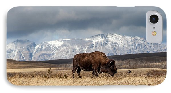 IPhone Case featuring the photograph Hello Bison by Fran Riley