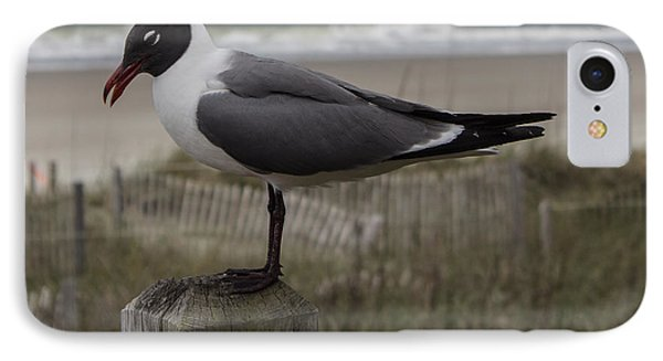 Hello Friend Seagull IPhone Case