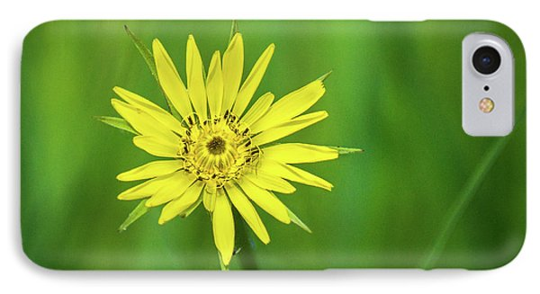 IPhone 7 Case featuring the photograph Hello Wild Yellow by Bill Pevlor