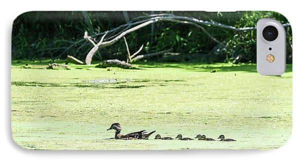 Hen And Baby Wood Ducks IPhone Case