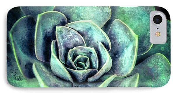 IPhone Case featuring the photograph Hens And Chicks Two by Julie Palencia