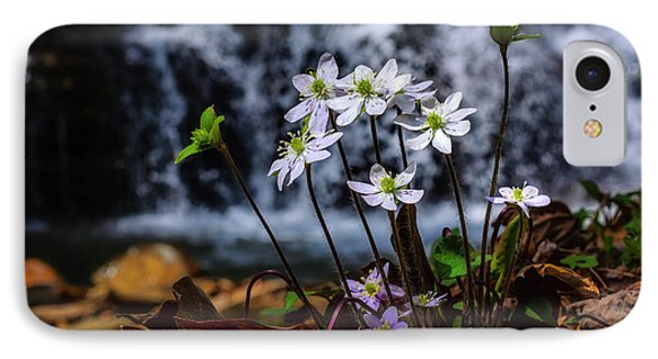 IPhone Case featuring the photograph Hepatica And Waterfall by Thomas R Fletcher