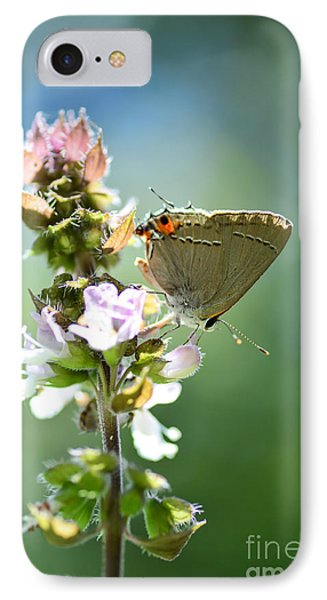 Herb Visitor IPhone Case by Debbie Green