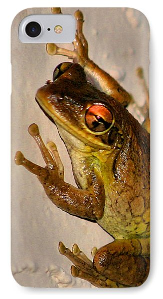 Heres Looking At You IPhone Case by Kristin Elmquist