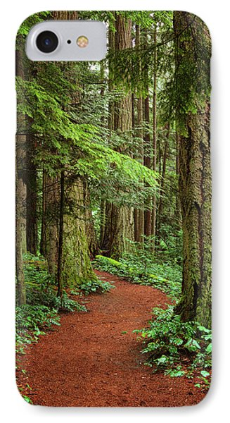 Heritage Forest 2 IPhone Case by Randy Hall