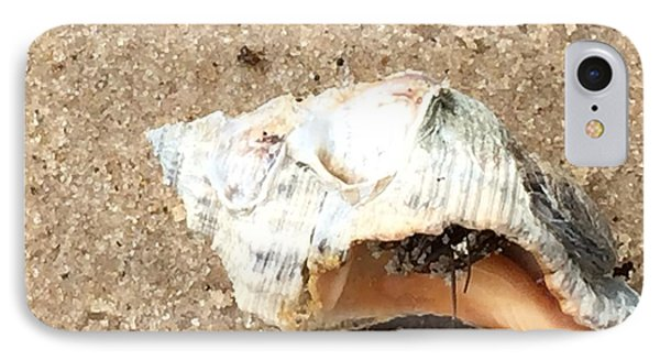 IPhone Case featuring the photograph Hermit Crab by Janice Spivey