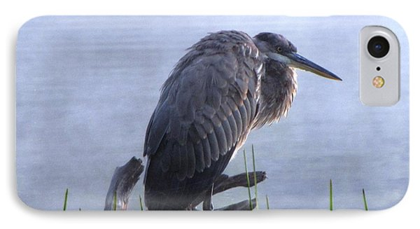 Heron 5 IPhone Case