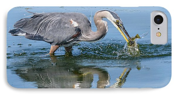 Great Blue Heron Catches A Fish IPhone Case by Keith Boone