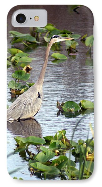 Heron Fishing In The Everglades Phone Case by Marty Koch