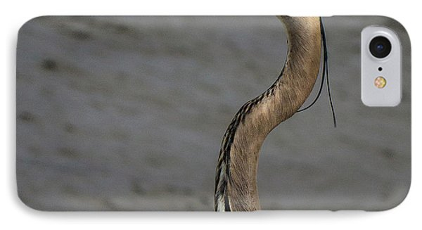 Heron Headshot IPhone Case by Jean Noren