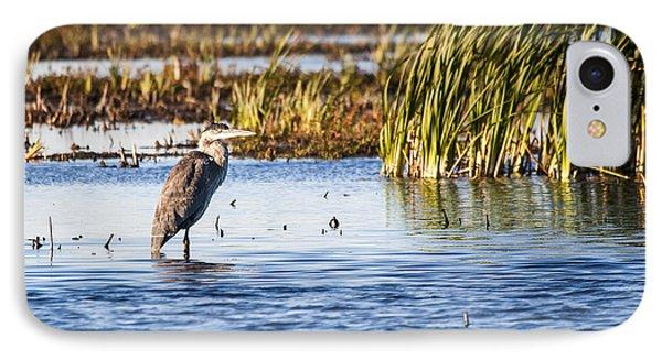 Heron - Horicon Marsh - Wisconsin IPhone Case by Steven Ralser