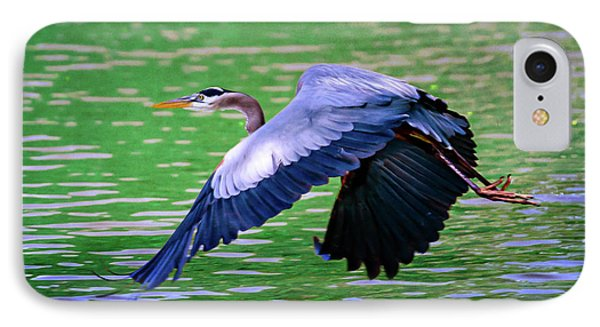 Heron In Flight At Honor Heights Park IPhone Case by Tamyra Ayles