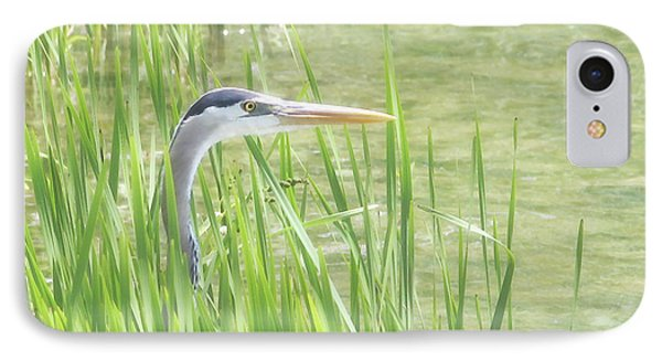 Heron In The Reeds IPhone Case by Anita Oakley