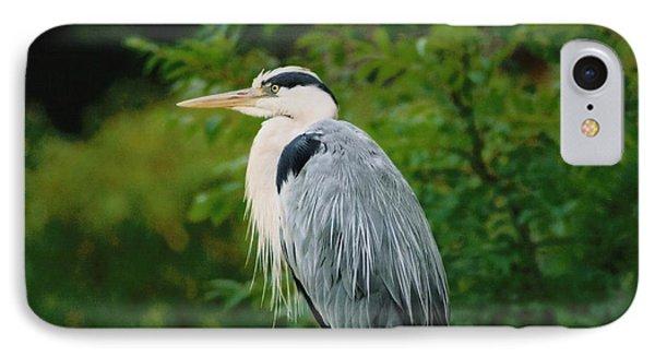 Heron IPhone Case by Martina Fagan