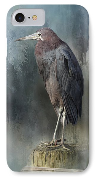 Heron Profile IPhone Case by Kim Hojnacki