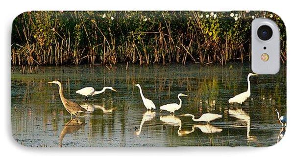 Heron Sunrise IPhone Case by Rita Mueller