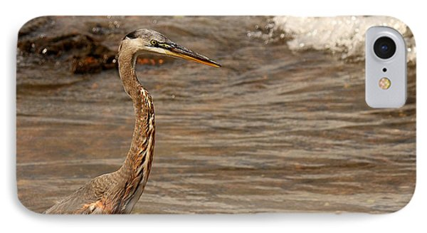 IPhone Case featuring the photograph Heron Supper by Greg Simmons