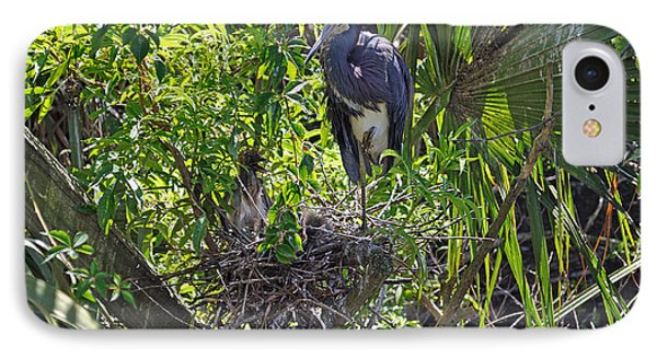 Heron With Chick In Nest Phone Case by Kenneth Albin
