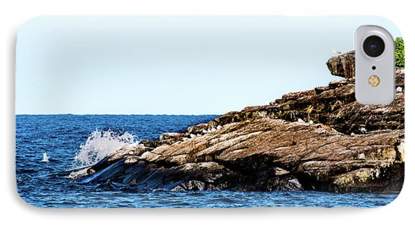 IPhone Case featuring the photograph Herring Gull Picnic by Onyonet  Photo Studios